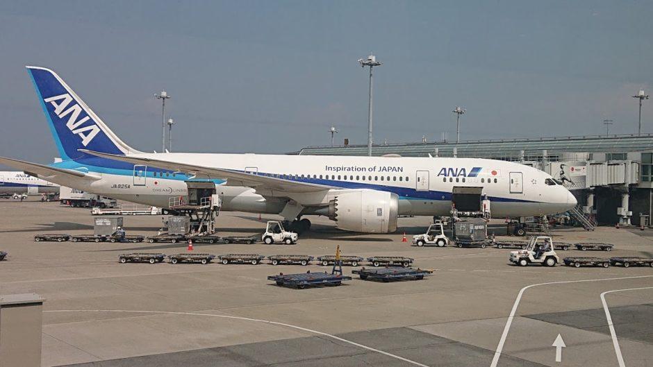 B787飛行機